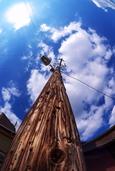 木製の電柱(飯塚市)