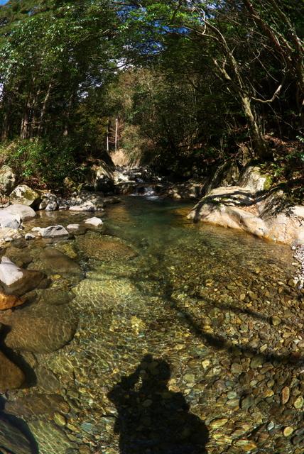 今期の初渓流釣り(山国川)
