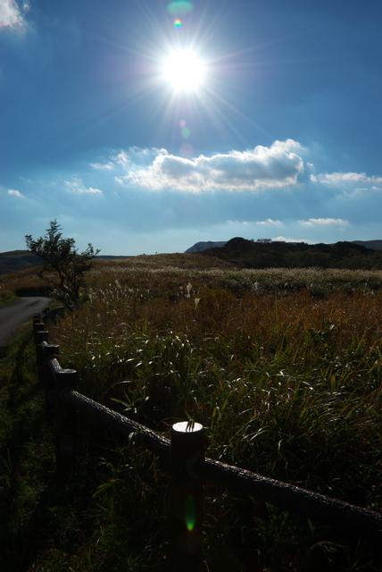 草原の小路(平尾台)