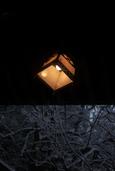 北九州では久しぶりの雪で(高見神社)-01