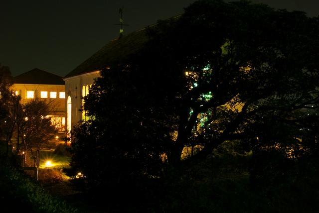 近所の結婚式場の夜景